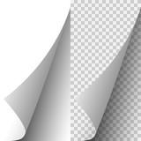 Vector white realistic paper page corner - 190791459