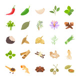 Herbs & Spices color vector icons - 190797013
