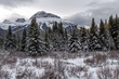 Winter landscape of Hillsdale Meadow, Bow Valley Parkway in the Banff National Park