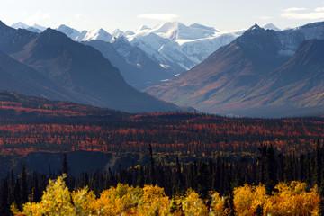 Denali Range Autumn Color Alaska Wilderness Winter Season