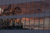Gebäudespiegelung im Sonnenaufgang - 190844280
