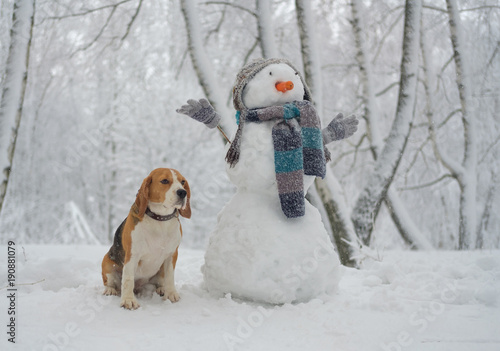 Beagle dog and snowman in the woods