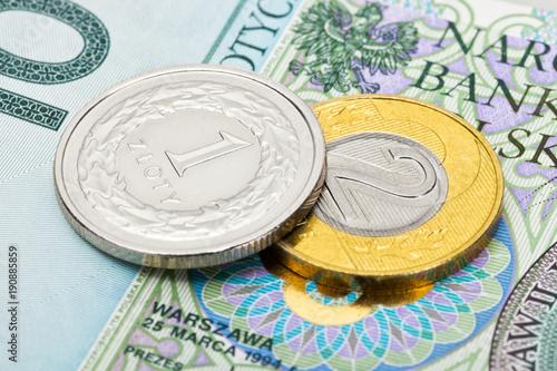 Zamyka w górę studio strzału Polska krajowa waluta - złoty