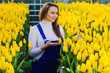 spring portrait of a woman who stands among the plantations with yellow tulips. Spring and flowers