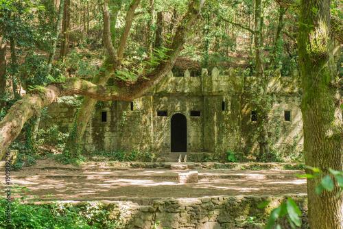 Aluminium Betoverde Bos The enchanted forest of Aldan