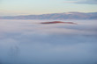 A small hilltop rising up from a sea of fog