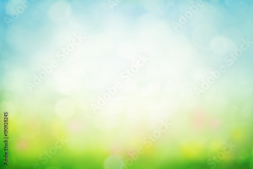 Leinwandbild Motiv Sunny spring meadow blur background