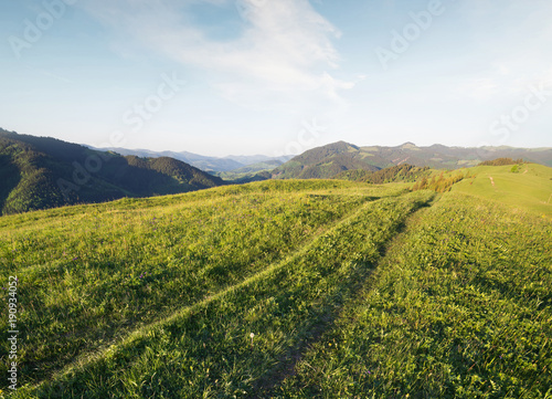 Road on the mountain hill. Bautiful natura landscape in the summer time