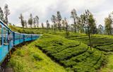 Train in Sri Lanka - 190937008