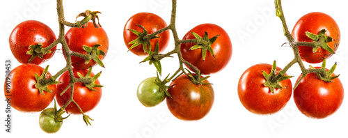 Papiers peints Légumes frais ripe red tomatoes on a branch. Isolated on white background. set, collection