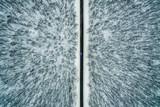 niebieski samochód jedzie wzdłuż drogi przez zimowy las. Droga widziana z powietrza. Krajobraz z lotu ptaka. Fotografia dronowa