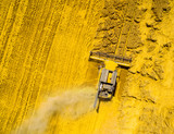 Aerial view of combine harvester on rapeseed field. Agriculture and biofuel production theme.  - 190952082