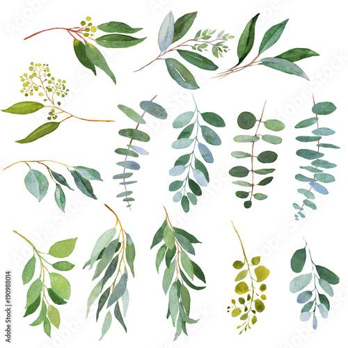 zielone-galazki-slubne-akwarela-ilustracje