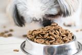 Dry dog treats in bowl - 190991248