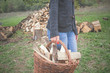 Woman carrying basket with cut woods prepared for winter. - 191004478