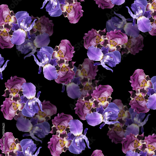 Beautiful floral background of purple and blue irises