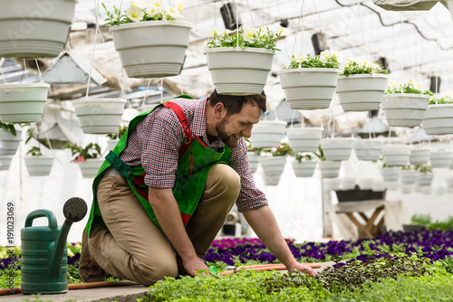 Man watering flowers in the hothouse. Flower greenhouse. Watering can