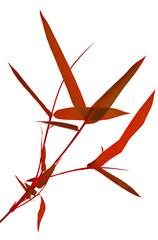 tige rouge de bambou