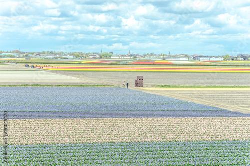 Foto op Canvas Lichtblauw Netherlands trip