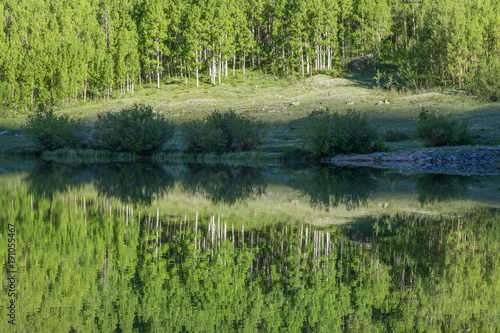 Foto op Canvas Pistache Scenic Reflection in a Colorado Wilderness Lake in Summer