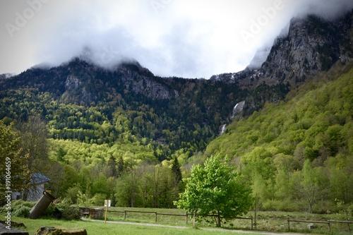 Foto op Canvas Pistache montagne