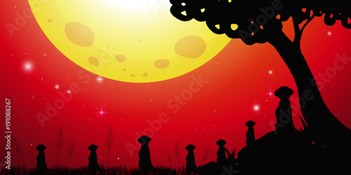Poster Kids Silhouette scene with meerkats and red sky