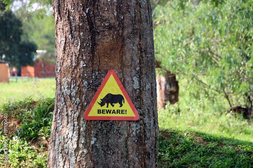 Fotobehang Neushoorn Wilde Nashörner in Uganda Afrika