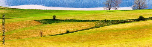 Foto op Aluminium Honing Spring mountain fields and meadow landscape.