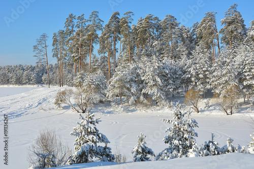 Russia. Winter landscape