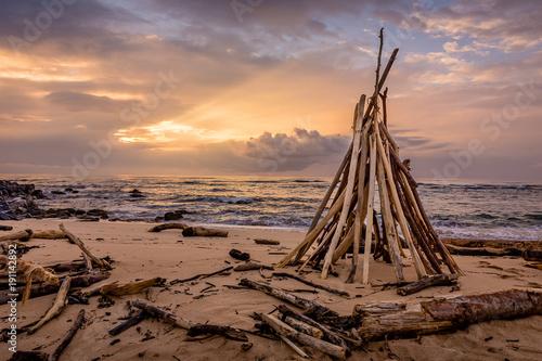 Fotobehang Zalm Driftwood of Lydgate Beach