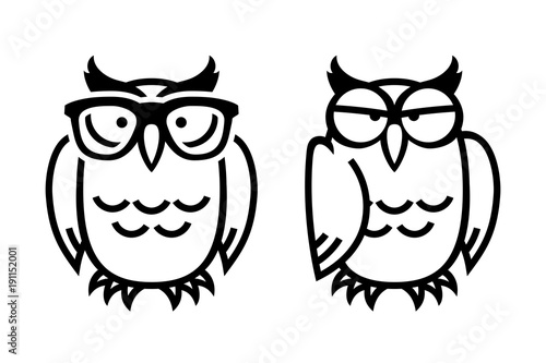 Foto op Canvas Uilen cartoon Funny owls, hand drawn vector illustration in comic style, isolated on white.