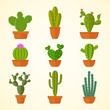Cactus decorative home plant in pots flat vector icons