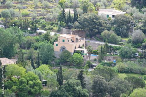 Papiers peints Kaki Palma de Majorque, une île de rêve