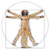 Vitruvian Man by Leonardo Da Vinci - 191172406