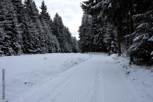 Foto op Canvas Grijze traf. Winterimpression