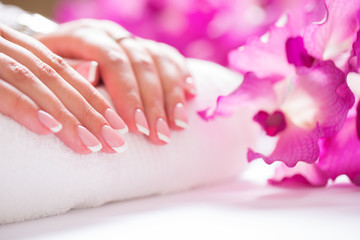Closeup shot of beautiful female dands with nails of france manicure. Manicure and spa concept © weyo
