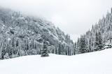 Zimowy widok w Dolinie Kościeliska.
