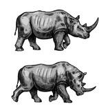 African rhino walking sketch of rhinoceros animal - 191271042