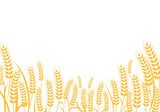 Agriculture wheat vector Illustration design - 191273858