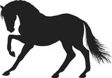 A silhouette of a stamping horse. - 191288252