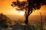 montagne et littoral de Costa verde en haute Corse - 191295486