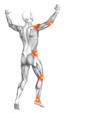 Conceptual human muscle anatomy with red and yellow hot spot inflammation or articular joint pain for health care therapy or sport concepts. 3D illustration man arthritis or bone osteoporosis disease - 191303646