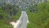 Rural desert road in San Luis Potosi, Mexico - 191311079