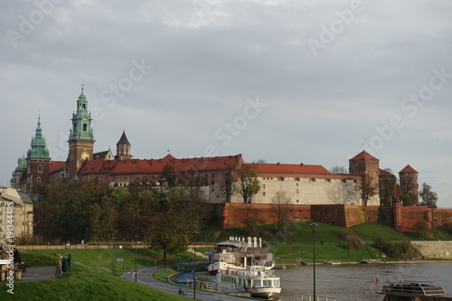 Foto op Plexiglas Krakau Wawel castle in Krakow near the Vistula river