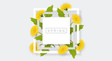 White frame with yellow dandelion flower and green leaf. Realistic vector illustration for spring and nature design, banner with square frame