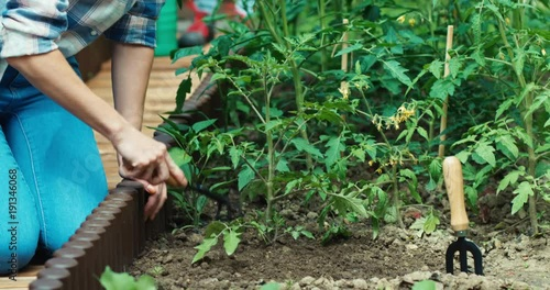 Family loosening soil and watering plants