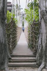 rope bridge path