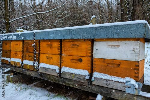 Aluminium Bee Winterruhe im Bienenstock