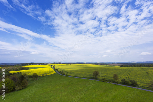 Foto op Canvas Blauwe hemel Spring landscape with fields, meadows and a road