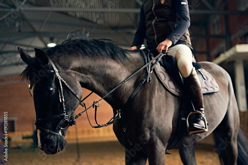 Aluminium Paarden Horse reder on a horse in a riding arena sits in the saddle and legs in stirrups
